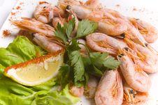 Boiled Shrimps Royalty Free Stock Image