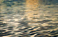 Free Liquid Gold Stock Photo - 5992770