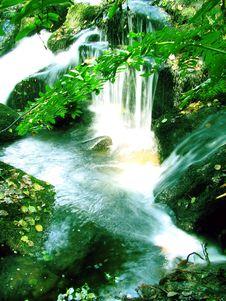 Free Stream Waterfall Royalty Free Stock Photography - 5993027