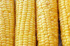 Free Corn Royalty Free Stock Image - 5993356