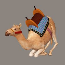 Free Camel Royalty Free Stock Photos - 5994328