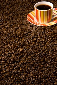 Free Coffee Royalty Free Stock Photography - 5994547