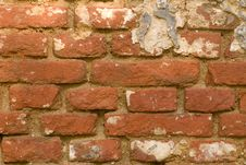 Free Grunge Brick Wall Stock Photos - 5994643