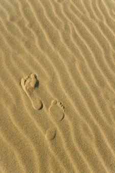 Free Two Footprints Royalty Free Stock Image - 5994716