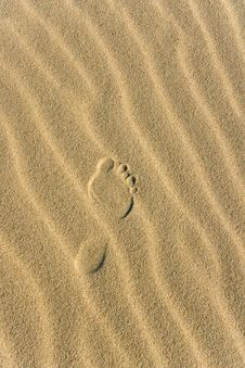 Free Footprint Stock Images - 5994824