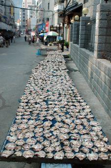 Free Chinese Dry Fish Stock Photos - 5996483