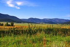 Free Mountain Pasture Royalty Free Stock Photography - 5996497