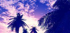 Free Beautiful Sunset Stock Photo - 5997820