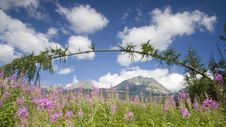 Free Landscape With Mountain Stock Photo - 5999810