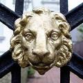 Free Lion Guard Royalty Free Stock Photo - 65855