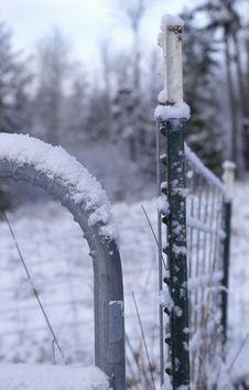 Free Winter Fence Royalty Free Stock Photography - 60667