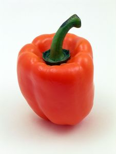 Free Single Orange Pepper Stock Images - 67564