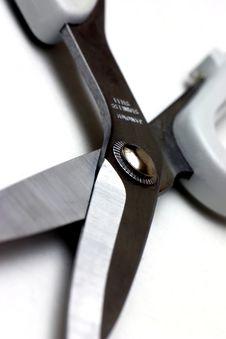 Free Scissors Stock Photos - 600163