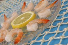 Boiled Shrimp On Blue Royalty Free Stock Images