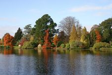 Autumn Trees, Sheffield Park, Sussex Stock Images