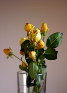 Free Bouquet From Small Roses Royalty Free Stock Images - 608559