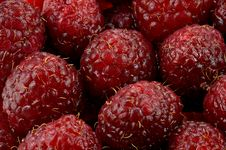 Free Raspberries Macro Royalty Free Stock Photography - 609807