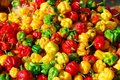 Free Colorful Peppers Stock Images - 6000084