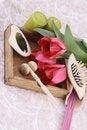 Free Spring Aromathetapy Royalty Free Stock Photography - 6004317