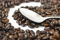 Free Coffee Beans Royalty Free Stock Images - 6006219