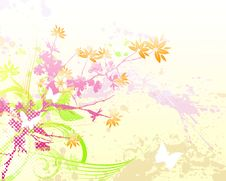 Free Floral Background Royalty Free Stock Photo - 6003315