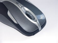Free Mouse2 Royalty Free Stock Image - 6003446