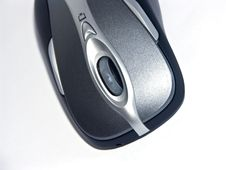 Free Mouse Stock Image - 6003491