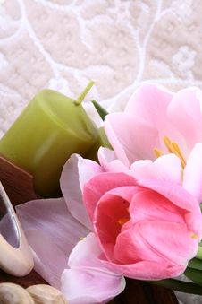 Free Spring Aromathetapy Stock Images - 6004464