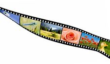 Free Film Strip Stock Images - 6005044