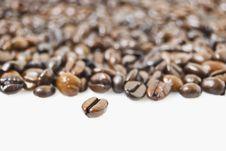 Free Coffee Beans Stock Photo - 6006210