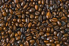 Free Coffee Beans Royalty Free Stock Photography - 6006217