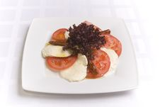 Free Mozzarella With Tomatoes Royalty Free Stock Photos - 6007638