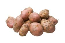 Free Fresh Potato Royalty Free Stock Photos - 6008518