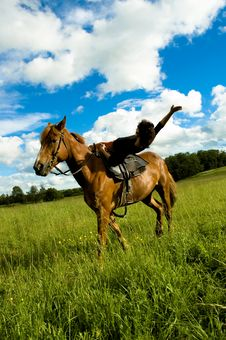 Free Horse Royalty Free Stock Image - 6008816