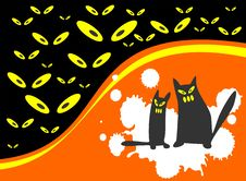 Two Halloween Cats Stock Images