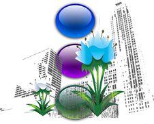 Flower City Stock Photography