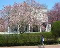 Free Spring Walking Stock Photos - 6011683
