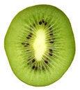 Free Close Up Of Kiwi Slice Royalty Free Stock Photography - 6019707