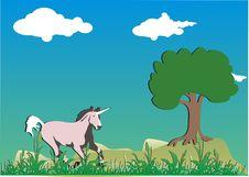 Free Unicorn Stock Images - 6010314