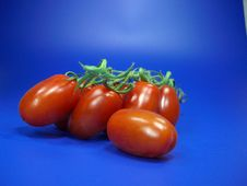 Free Tomatoes Royalty Free Stock Image - 6013336