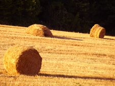 Hay S Rolls Royalty Free Stock Photography