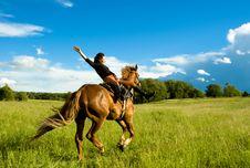 Free Horse Royalty Free Stock Image - 6014916