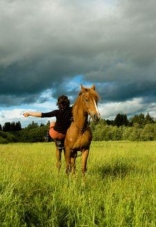 Free Horse Royalty Free Stock Photo - 6014935