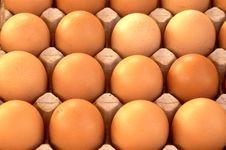 Free Eggs Royalty Free Stock Image - 6018736