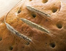 Free Bread And Heads Of Wheat Stock Image - 6019671