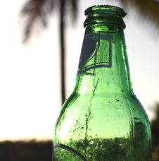 Free Beer Bottle Royalty Free Stock Images - 6023849
