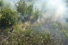 Free Fireman Fighting A Heath Fire In Gdansk, Poland Stock Photography - 6028372