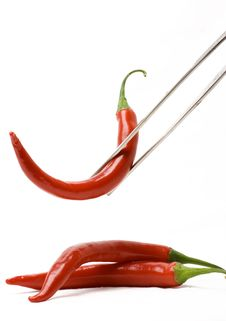 Free Red Pepper Stock Photo - 6029660