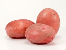 Free Rosara The Red Potato Stock Images - 6030594