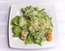 Free Caesar Salad Stock Photography - 6031412